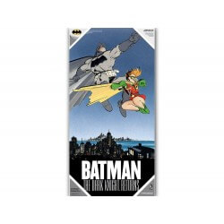 Poster DC Comics verre trempé - Dark Knight Returns Batman & Robin 30x60cm