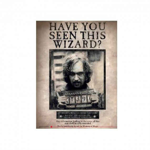 Poster en Verre Harry Potter - Have You Seen This Wizard Sirius 30X40cm